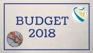 Budget 2018 Icon