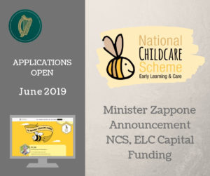 NCS capital grants 2019