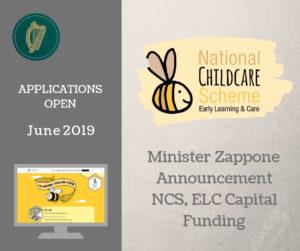 NCS capital grants 2019
